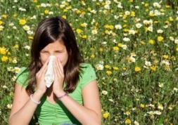 Alerte au pollen : précautions pour les porteurs de lentilles