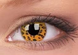 Wild Eyes, les lentilles fantaisie au regard sauvage !