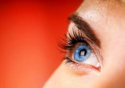 Pourquoi les lentilles de couleur coûtent cher ?