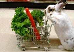 Les aliments bio meilleurs pour la santé visuelle ?