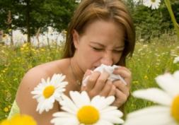 Alerte rouge au pollen de bouleau : attention les yeux !
