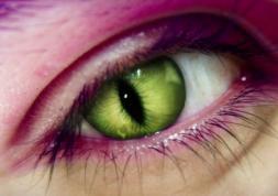 Les lentilles yeux de serpent d\'Ayem Nour font polémique