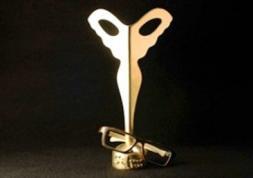 Silmo d'Or 2013: les meilleures innovations récompensées