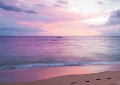 La rétine et ses pathologies: un congrès international à Hawaï
