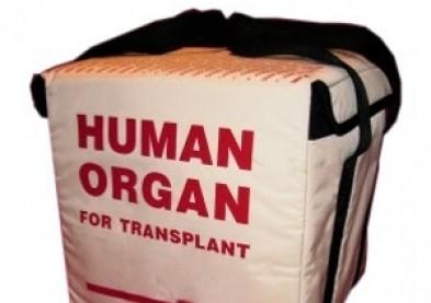 Horreur: les yeux d'un enfant arrachés par des trafiquants d'organes