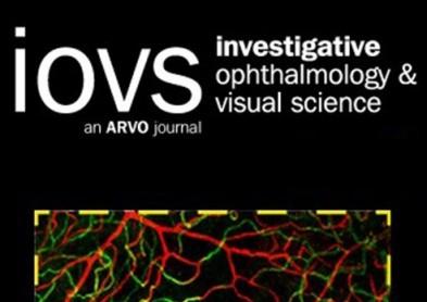 Simulateur de film lacrymal: bientôt des lentilles plus confortables ?